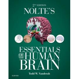 Nolte's Essentials of the Human Brain E-Book (ebook)