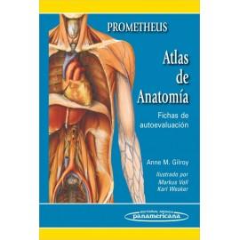 Prometheus. Atlas de anatomía: Fichas de autoevaluación