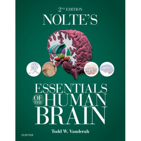 Nolte's Essentials of the Human Brain E-Book (ebook) - Envío Gratuito