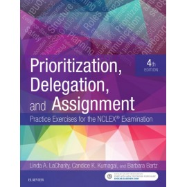 Prioritization, Delegation, and Assignment - E-Book (ebook)