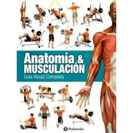 Anatomía & Musculación. Guía visual completa