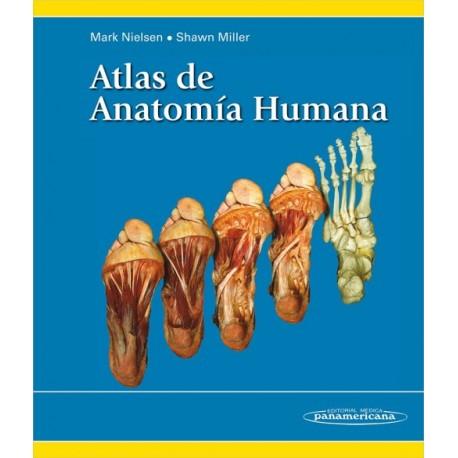 Atlas de anatomía humana Panamericana - Envío Gratuito